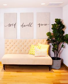 Sofa in entryway of office space with large indoor plant and inspirational artwork
