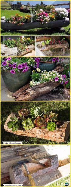 Wood Logs and Stumps DIY Ideas Projects & Furniture Instructions DIY Hollowed Wood Log Planter Instructions – Raw Wood Logs and Stumps DIY Ideas Projects Log Planter, Wooden Garden Planters, Flower Planters, Diy Planters, Tree Stump Planter, Tree Stumps, Backyard Seating, Backyard Landscaping, Wood Logs