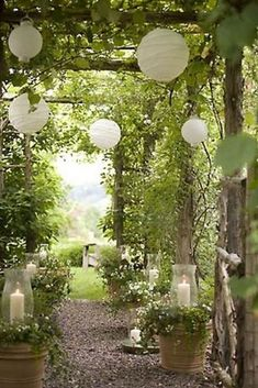 There are lots of pergola designs for you to choose from. First of all you have to decide where you are going to have your pergola and how much shade you want. Dream Garden, Garden Art, Home And Garden, Summer Garden, Moon Garden, Garden Oasis, Garden Cottage, Summer Evening, The Secret Garden