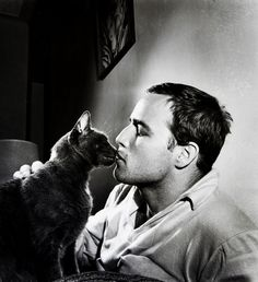 Marlon Brando loved cats...I rest my case!