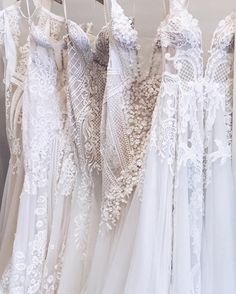 Welcoming these beauties back to the Pallas Couture Perth Studio from our @brownsbride London Trunk Show @pallascouture #PallasCouture #WeddingGown #WeddingDress #HauteCouture #AustralianDesigner #London