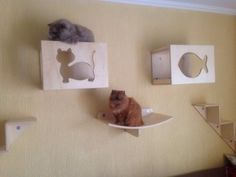 Como tornar a sua casa perfeita para seu(s) gato(s)