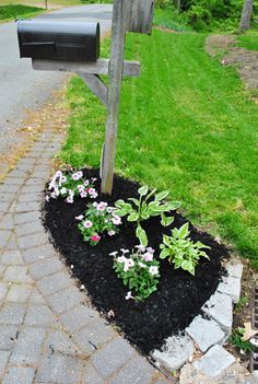 Hosta La Vista (A Little Front Yard Landscaping) Use hostas to transform a dull corner of your garde Gardening For Beginners, Gardening Tips, Mailbox Flowers, Mailbox Landscaping, Young House Love, Summer Garden, Garden Fun, Outdoor Areas, Amazing Flowers