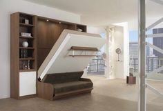 Murphy Bed With Couch: Mesmerizing Murphy Bed Couch Ideas With Photos Of  The Murphy Bed