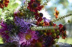 Květinová vazba ze zápleváků (Helenium), ploštičníků (Cimicifuga racemosa), sporýšů argentinských (verbena bonariensis) a letních aster