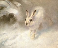 National Wildlife Galleries: Alan Hunt Wildlife Art