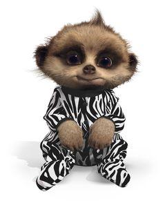 Baby Oleg in safari suit Cute Funny Animals, Funny Cute, Baby Meerkat, Mum Tattoo, Cat Whiskers, Kids Cards, Cute Cartoon, Cute Pictures, Safari