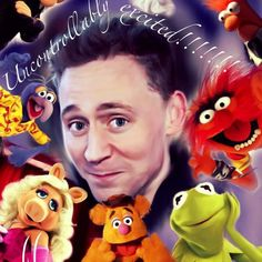 """OMG Tom Hiddleston is starring in the next Muppet movie, """"Muppets Most Wanted!"""" """"...I'M GONNA DIE!"""" THIS IS GONNA BE AAAAALLLLL KINDS OF ADORABLE."""