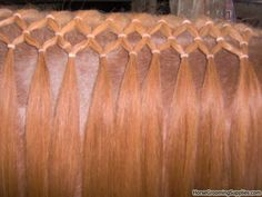 Hopefully my horse will be steady in the neck so I can keep her mane long and do this