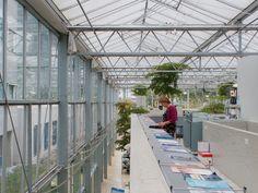 Pyjama Garden Medical Center Extension MVRDV