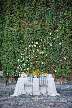 ivy-covered wall & table
