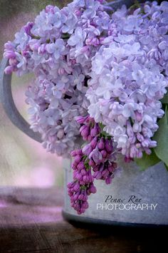 Lilacs in the Garden by pennyraephotography on Etsy, $25.00