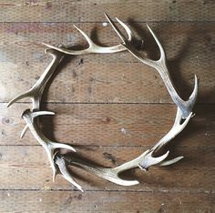 Antler wreath with out initials in the middle.