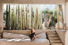 Ideas para decorar con cactus y suculentas