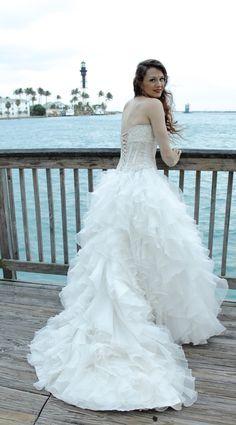 { HALI ROSE PHOTOGRAPHY } - South Florida Wedding Photographer. Swan princess status!