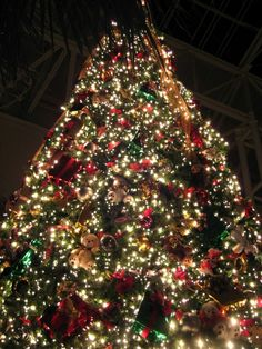 Christmas at Opryland!!!!! My favorite!!!!!