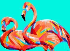 Add a splash of colour to your home with original artwork by Australia artist Anya Brock. Buy online a wide range of art prints, canvas prints and home decor. Flamingo Art, Art Party, Australian Artists, Buy Prints, Bird Art, Painting Inspiration, Art Images, Les Oeuvres, New Art