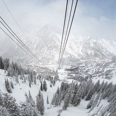 the Snowbird Aerial Tram ascends vertical feed during a breathtaking 10 minute ride Snowboarding, Skiing, Ski Resorts, I Want To Travel, Far Away, Rocky Mountains, Evergreen, Trek, Wander