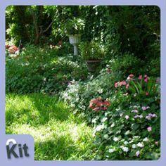 Découvrez cet ensemble de plantes idéales pour un petit espace à l'ombre ou à la mi-ombre qui joue avec des couleurs douces.