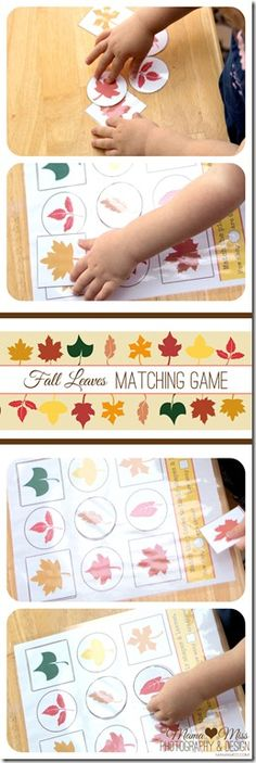 learning monkeys: Fall Leaves Matching Game