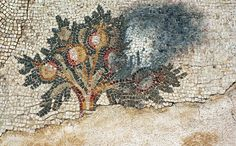 Fire in the Pomegranate Grove, a Byzantine mosaic in the ancient city of Caesarea. This used to be the floor of a large mansion, built at the end of the 6th century AD