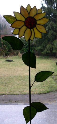 Picture (gal/Flowers/sonnenblume1.jpg)