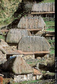 Teitos (typical dwellings). Braña de la Pornacal. Somiedo Natural Park and Biosphere Reserve. Asturias. Spain