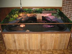 Another indoor turtle pond. Here ya go Jayme! Turtle Aquarium, Turtle Pond, Aquarium Fish, Aquarium Ideas, Turtle Tub, Turtle Enclosure, Tortoise Enclosure, Reptile Enclosure, Turtle Care