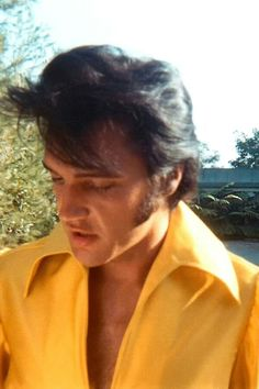Gorgeous Elvis!.