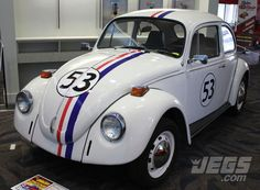 """Anyone want to show this bug named """"Herbie"""" some love?"""