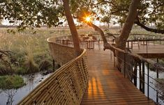New opening: Botswana's Sandibe Okavango Safari Lodge | Luxury Hotels Travel+Style