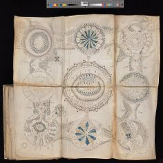"""Fold-out pages covered with fascinating detail, from the marvelous Voynich Manuscript Cipher Manuscript, apparently from 16th or late 15th century.  """"Scientific or magical text in an unidentified language, in cipher, apparently based on Roman minuscule characters"""" Beautifully documented online by Yale University Library: http://brbl-dl.library.yale.edu/vufind/Record/3519597"""