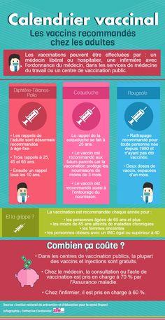 Infographie : le calendrier vaccinal des adultes