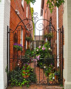 Secret garden in Beaufort, NC