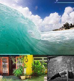 Karibu Garden Spring Trip 2016 - Barbados looks awesome!