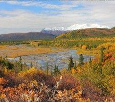 Alaska Scenic Fall Colors from the denali rail tours