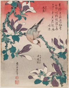 Katsushika Hokusai, Java Sparrow on Magnolia (Bunchô, kobushi no hana)1834.  Inscription (translation): The east wind rises day and night. / Peach and plum blossoms cannot help being ruffled./ I study the dewdrops drenching the flowers. / The magnolia falls comparatively later.— By the Ming dynasty literati painter Chen Daofu (or Chen Chun 陳淳, 1483–1544)