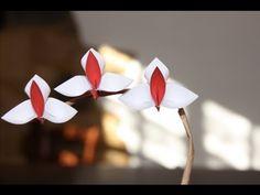 Origami - Orchidée