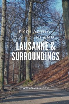 What to see and do in Lausanne, Switzerland    #travel #traveltribe #switzerland #lausanne #explore #wanderlust #blog #travel #travelling #bloggerstribe
