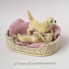 1:12 12th OOAK 2 Labrador Puppy in Basket Dolls house Dog Paws of Love Miniature