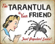 Amazon.com: Funny Retro Pet Tarantula Sign: Home  Kitchen