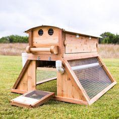 Great chicken coop design! Belfry shown with roost wing doors closed and run/eggbox access door opened.