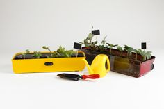 Mini vegetable garden #SolmiKim #HannaJung # CarrierMiniGarden #상명대학교 #산업디자인 #졸업전시회 #졸전 #플럭서스 #변화 #흐름 #컨셉 #일러스트 #작업 #illustration #fluxus #flow #flux #concept #design #art #industrial #product #image #2016 #13th #degreeshow