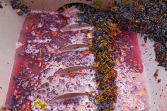Wine Waste Can Be Used To Create Bio-fuels And Medicines -  [Click on Image Or Source on Top to See Full News]