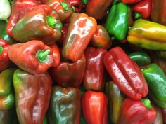 sweet peppers red and green Claudia's Secrets