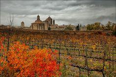Monasterio de Sta. Maria de Poblet, Poblet, Tarragona