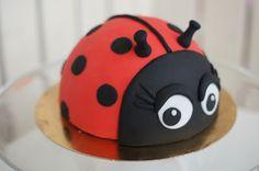 Confetti Ladybug Lady Bug, Jungle Cake, Cute Cakes, Cake Pops, Confetti, Fondant, Cake Decorating, Desserts, Kids