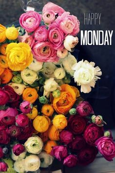 Happy Monday--always you can't be sad with a bunch of gorgeous flowers!