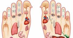 This Is Why You Need To Massage Your Feet Every Night Before Bed When was the last time you've visited your massage therapist? Massage is the best relaxation technique since forever. Health Benefits, Health Tips, Health And Wellness, Health And Beauty, Health Remedies, Home Remedies, Natural Remedies, Foot Reflexology, Foot Massage