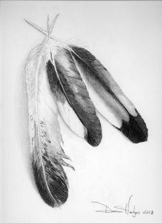 Pencil Drawings of Eagles | ...